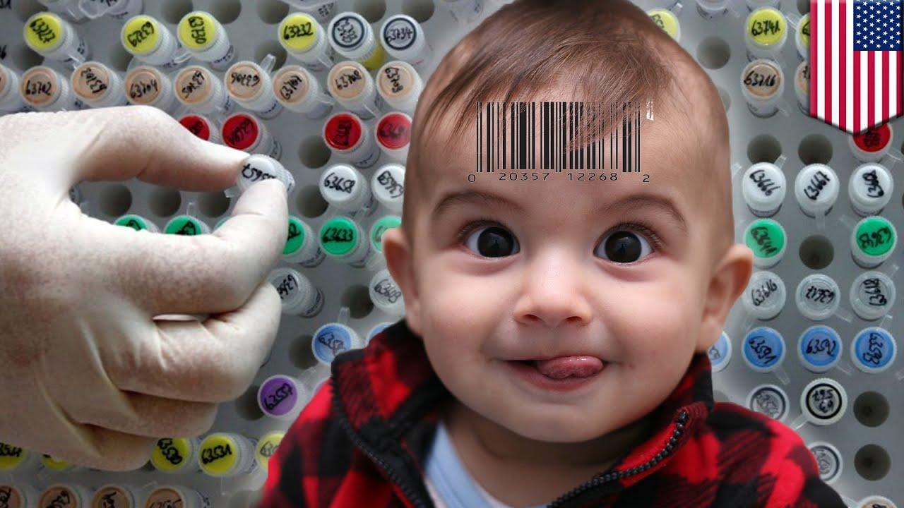 genetic engineering of humans