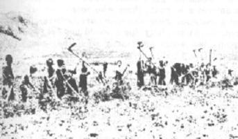 De Adullam jongens waren normale jongens; zij werkten op het veld