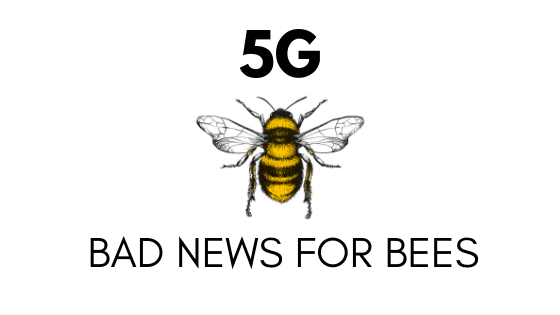 5G bad news for bees