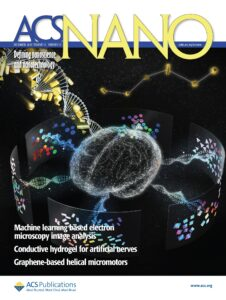 Acs NANO Journal, defning Nanoscience and Nanotechnology