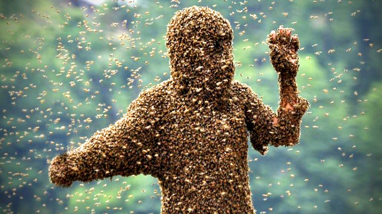 bees that sting - person covered by bees