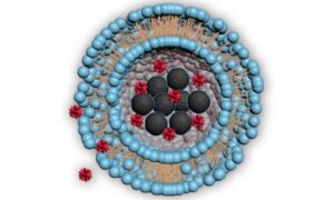 Magnetic Particles Deliver Drugs With Pinpoint Targeting