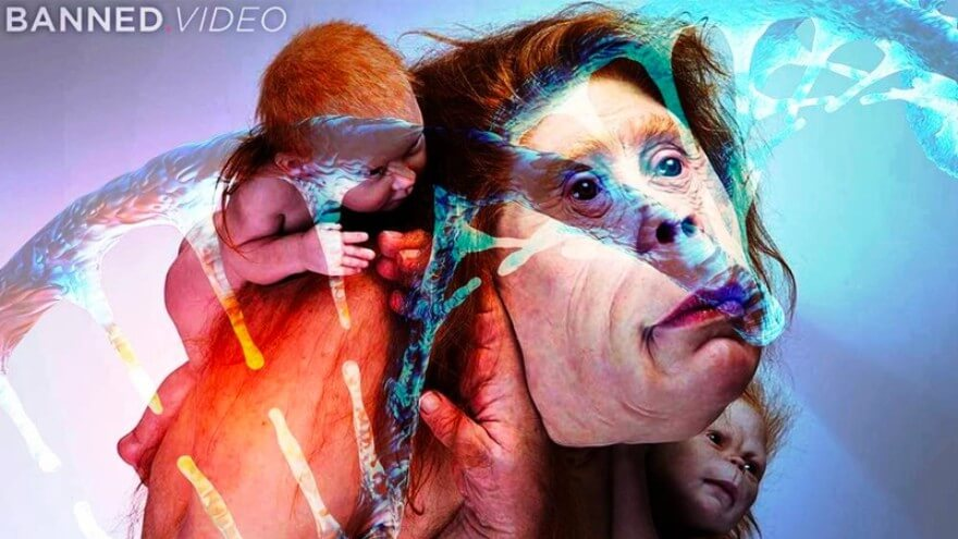 human animal hybrids - genetic experiments - underground dumbs - hybrid babies