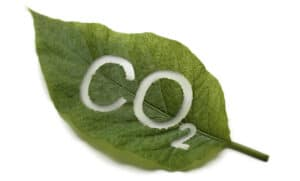 Carbon Dioxide - More CO2 is good for planet Earth